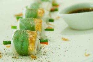 Rice Paper Rolls by Alex-Celebrian