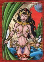 Warlord of Mars Sketch Card 3 by tonyperna