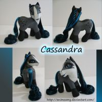Cassandra Pony by AnimeAmy