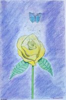 The Yellow Rose & The Butterfly by Nebrinn