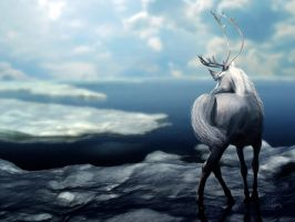 Arctic Antlers by CoolCurry