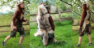 Full hide coyote headdress by lupagreenwolf