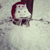 snowman by lalliphotography