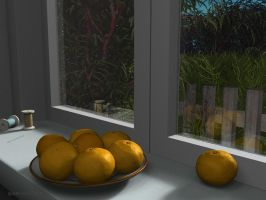 Mandarins on the windowsill by slepalex