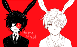 [Redraw] The Poor Blind Rabbit by RavenHeart201