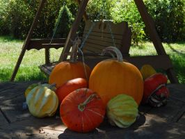 Some Gourds by a Swingset by Artlune