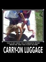CARRY ON LUGGAGE by paradigm-shifting