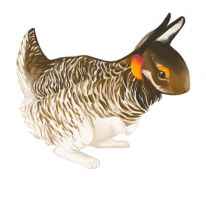 Spring Chicken Bunny by eviri