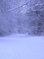 snowy fields -forests- 58 by dark-dragon-stock