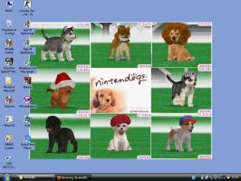 Nintendogs Collection by FoxBluereaver