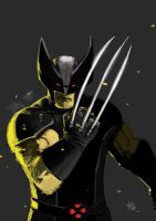 Wolverine by FrancescoIaquinta