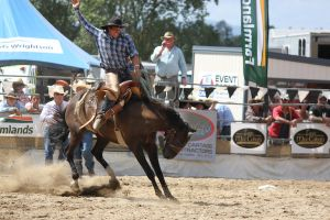 Taupo Rodeo 101 by Sooty-Bunnie