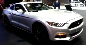 All New Mustang Coupe by toyonda