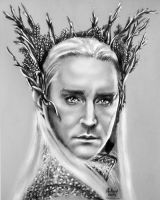 The King Thranduil by Andriks