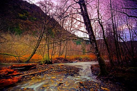 Colors of Goldstream by travismchlanphoto