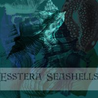 seashells brushes by esstera