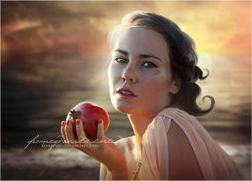 Pomegranate Sunset by Doucesse