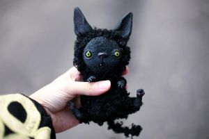 monstrous cornish rex cat by da-bu-di-bu-da