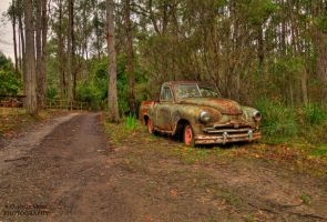 Woodys Old Ute by DanielleMiner