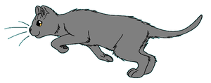 ThunderClan - Smallear by WildpathOfShadowClan
