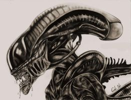 Alien by CarolineSalinas