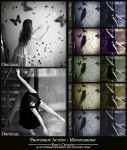 Photoshop Actions - Monochrome by dreamswoman