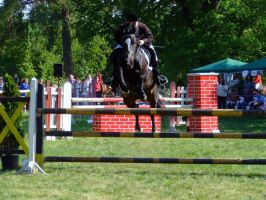 horse jump 2 by Cab-GdL