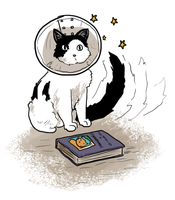Bookcat by Spoilersays