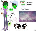 Equestria Girls thunder feather ref sheet by thorad11