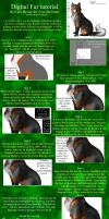 Digital Fur Tutorial by ART-fromthe-HEART