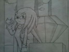 Knuckles The Echidna x3 by MonicaShadowXD
