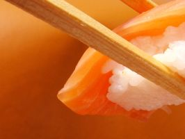 The Salmon Sushi by smile4grace
