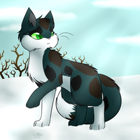 TsC - Bluepaw hunting in a snow by FlareAKACuteFlareon
