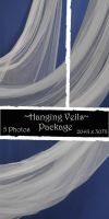 Hanging Veils Package by almudena-stock