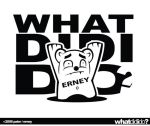 what did erney do? by rodmen