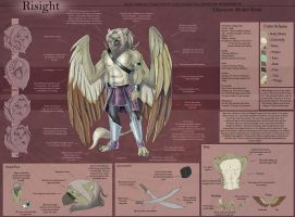 Risight Mur - Character Sheet by Ulario