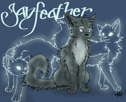 Jayfeather - You Won't See Me by Onyxx9