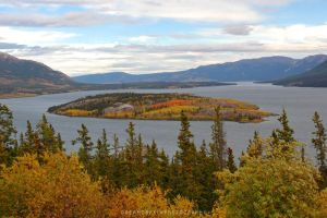 Yukon Autumn by drewhoshkiw