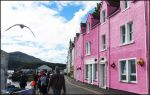 Pink House Plus Gull by sags