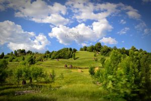 Bukowina by Fantasia-Art