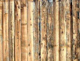 Wood Texture 11 by Aimi-Stock