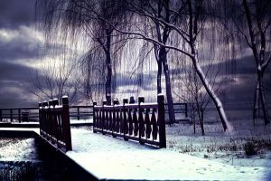 Snow scenery 3 by sunny2011bj
