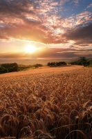 Summer Hills by LG77