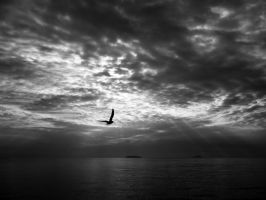 Lonely by wallaberto