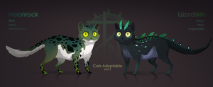 [Closed ] Cats Adoptable Auction #3 by quacknear