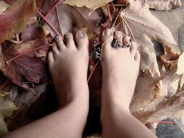 .feet on colors of autumn. by Loinaar