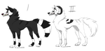 Canine Adopts Name Your Price (CLOSED) by BlakMajyc-Adoptables