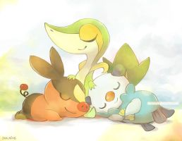 Pokemon BW Starters by Derlaine8