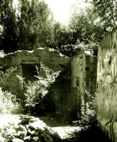 Ruins by suicidalsocialite