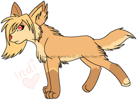 Indi by squishy-paws